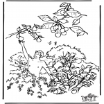 Bible coloring pages - Adam