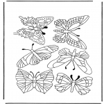 Animals coloring pages - Butterflies 1