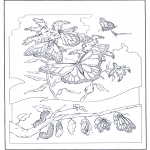 Animals coloring pages - Butterflies 2