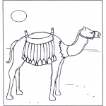 Animals coloring pages - Camel in the sunshine
