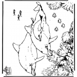 Animals coloring pages - Dophins 5