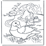Animals coloring pages - Ducks