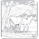 Animals coloring pages - Free coloring pages horse