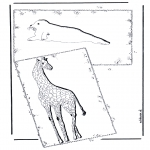 Animals coloring pages - Giraffe and sea lion