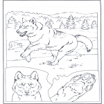 Animals coloring pages - Gray Wolf
