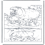 Animals coloring pages - Hippo 1