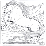 Animals coloring pages - Horse 5