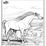 Animals coloring pages - Horse 9