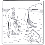 animals coloring pages - Horse and foal