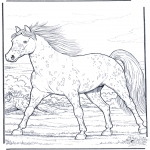 Animals coloring pages - Horse gallop at full