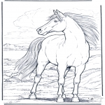 animals coloring pages - Horse in the wind