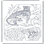 Animals coloring pages - Leopard 1