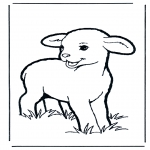 Animals coloring pages - Little lamb 1