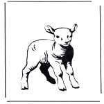 Animals coloring pages - Little lamb 2
