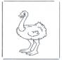 Little ostrich