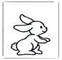 Little rabbit 1