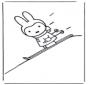 Little rabbit on ski's