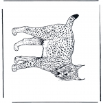 Animals coloring pages - Lynx