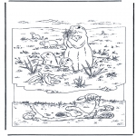 Animals coloring pages - Marmot
