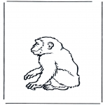 Animals coloring pages - Monkey 2
