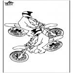 All sorts of - Motorbike 3