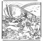 Noa's ark 5