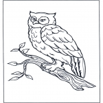 Animals coloring pages - Oal on tree