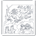 animals coloring pages - Orang utan