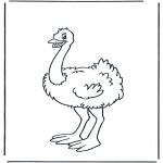 Animals coloring pages - Ostrich 1