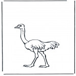Animals coloring pages - Ostrich 2