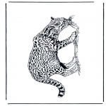 Animals coloring pages - Panther