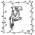 Animals coloring pages - Parrot 2