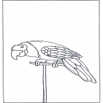 Animals coloring pages - Parrot 3