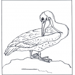 Animals coloring pages - Pelican
