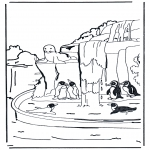 Animals coloring pages - Pengiuns 1