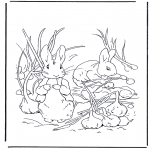 All sorts of - Peter Rabbit 1