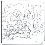 All sorts of - Pieter Rabbit 2