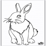 Animals coloring pages - Rabbit 4
