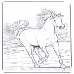 Animals coloring pages - Running horse