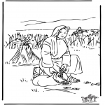 Bible coloring pages - Ruth 2