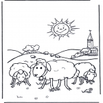 Animals coloring pages - Sheep in the sunshine