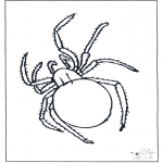 Animals coloring pages - Spider