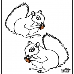 Animals coloring pages - Squirrel 4