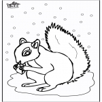 Animals coloring pages - Squirrel 5