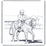Animals coloring pages - Training