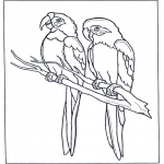 Animals coloring pages - Two parrots