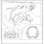 Animals coloring pages - White shark