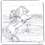 Animals coloring pages - Wild horse